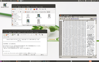 2011-05-27_Bz_Screenshot.png